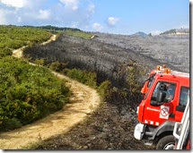New article: Using Unplanned Fires to Help Suppressing Future Large Fires in Mediterranean Forests.