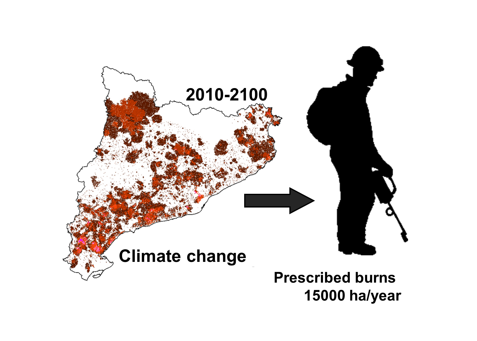 New article: Adapting prescribed burns to future climate change in Mediterranean landscapes