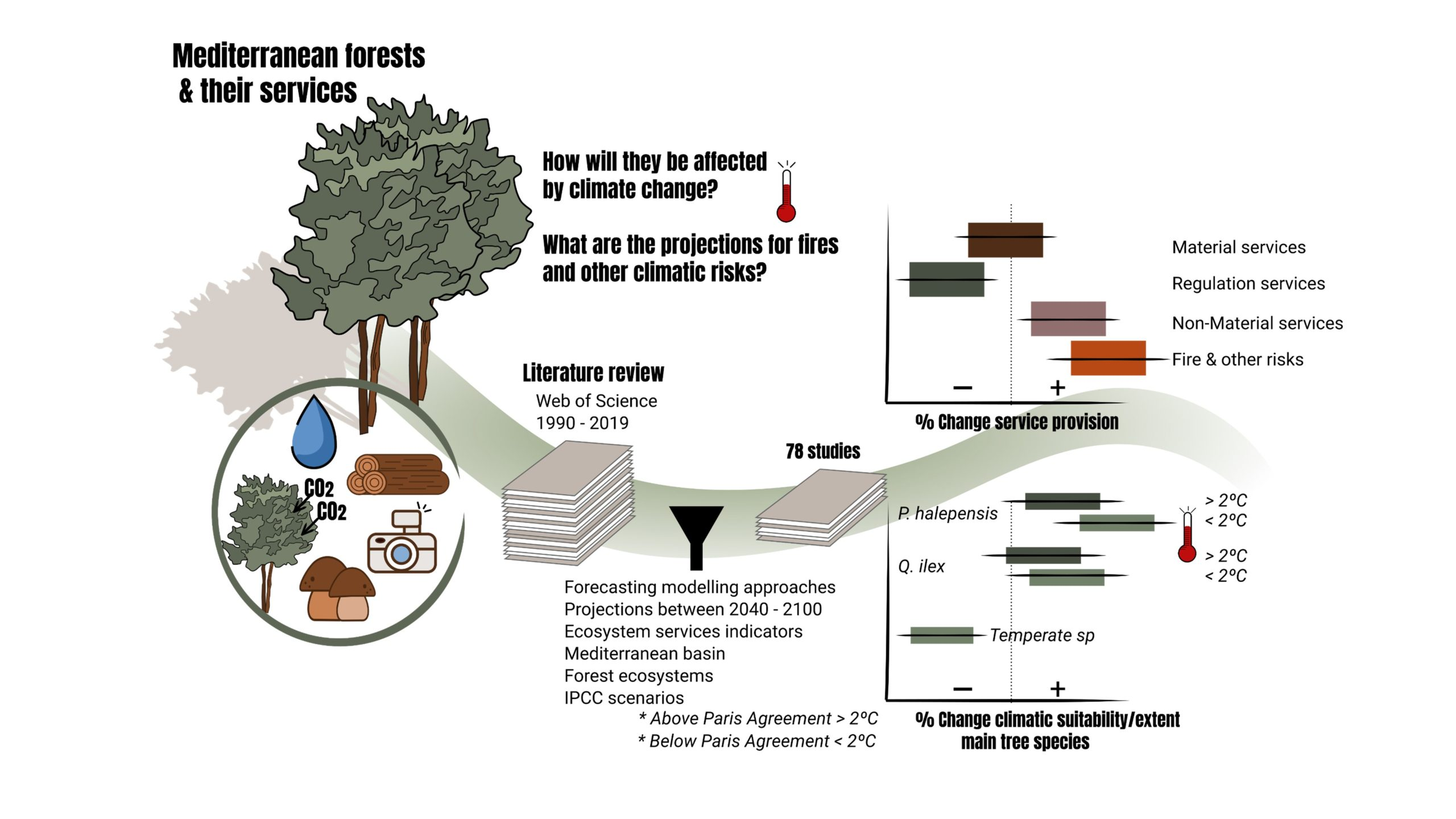 New article: Ecosystem services provision by Mediterranean forests will be compromised above 2℃ warming